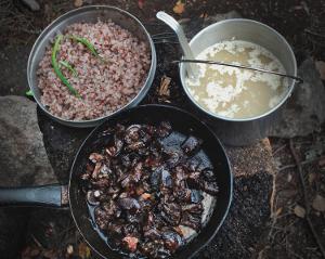 Жареные грибы. Подножный корм в походе
