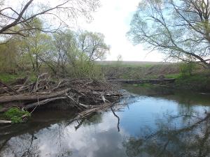 Река Упа Советск Ломинцево Прилепы