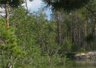 Водный туризм, сайт Турвода